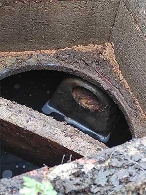 bouchon canalisation Aveyron